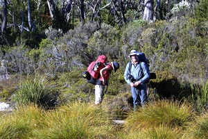 Walkers on the Overland Track