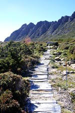 Towards Cradle Mountain