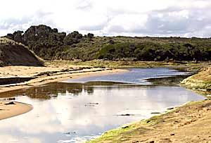 A stream flows out to the sea near the Twelve Apostles.