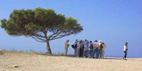 Tour group at Hagar Qim