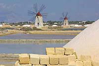 windmills dot the salt road to the North of Marsala